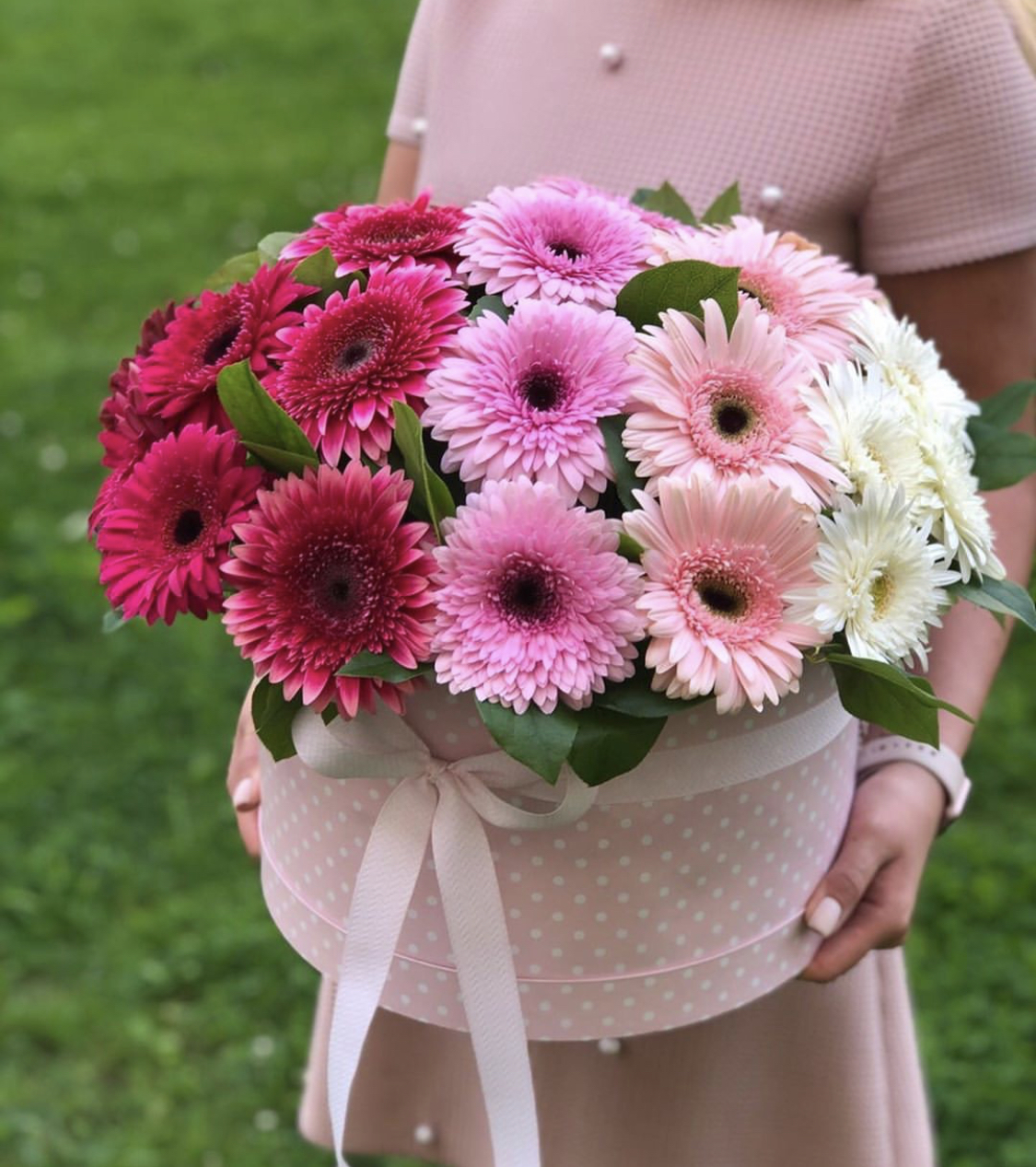 Фото с цветами герберами